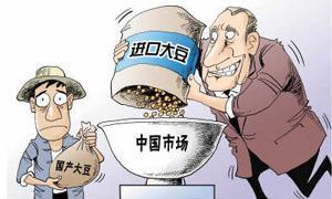 2016年8月11日豆粕大豆油脂早盘分析摘要