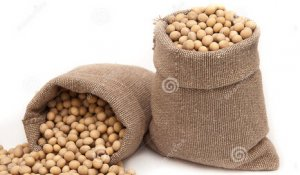 供应增加过猛 产区豆价遭闷棍