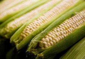 国内玉米终迎来一轮区域性反弹
