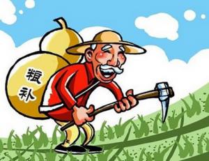 供给侧改革:辽宁省56.9亿元玉米补贴资金