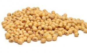 近日豆粕连续下跌的原因是什么?