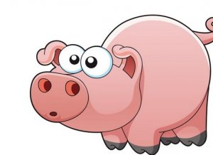 生猪市场很惶恐!因灾死亡生猪60多万头,广州政府抢猪源,最高补贴500万!