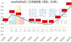 母猪补栏积极性高,8月能繁母猪存栏企稳的概率较大