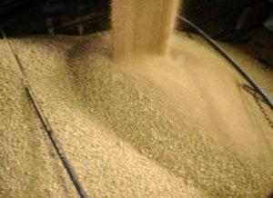 2016年8月30日豆粕大豆油脂早盘分析摘要