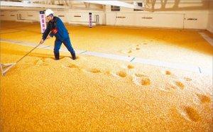吉林省玉米购销调查:激活市场该靠啥?