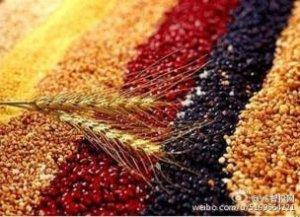 俄罗斯农业部计划将国内大豆产量增加一倍
