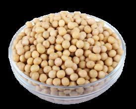 2016年9月2日豆粕大豆油脂早盘分析摘要