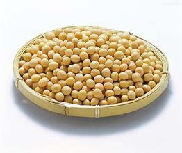 中国8月份进口大豆767万吨,同比增加3.8%
