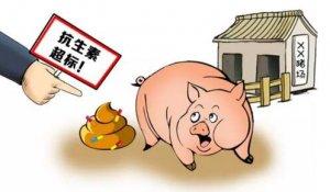粪便抗生素超标?处理成本或由养殖户承担!