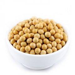 2016年9月26日豆粕大豆油脂早盘分析摘要