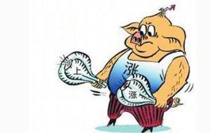 业内人士:猪价大周期上涨已经在6月份结束