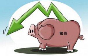 养猪企业第三季度销售均价环比上一季度下跌