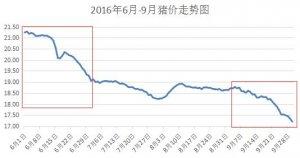 分析6月和9月猪价下跌的原因,总结后市:继续压栏还是适时出栏好?