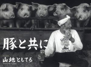 探寻日本养猪业现状 寻找中国健康养猪出路