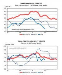 美国猪价创史上最大春-夏跌幅