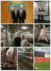 天心种业董事长刘艳书等一行考察丹麦养猪业