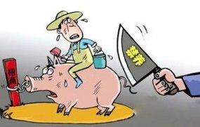 【新闻点评】南京全市六成土地被划定为禁养区 大量猪场面临退出行业风险