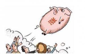 近期养殖单位惜售情绪浓重 猪价面临进一步走高