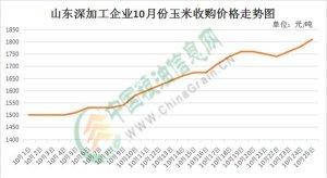 山东玉米价格之涨跌看供应