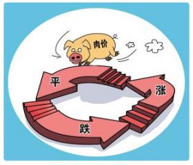 养猪行情放缓脚步,春节猪价或维持在18~20元/公斤
