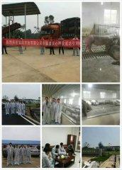 热烈庆祝�阳农牧有限公司成功引种600头