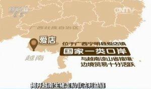 央视揭秘越南生猪走私利益链:1天上万头偷渡中国