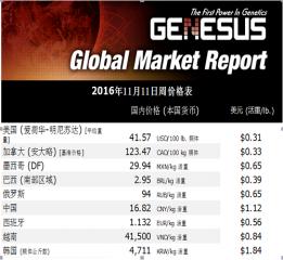 加裕市场报告11月11日