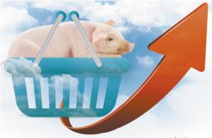生猪价格行情大幅上涨 一头生猪可赚800元