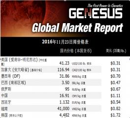加裕全球市场报告11月23