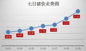 猪价爬坡均价越过8.5元/斤,千元仔猪等到