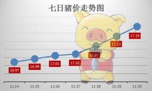 11月猪价整体延续小幅调涨态势 东北要涨