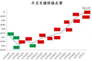 猪价连涨11天,17元/公斤近在咫尺!