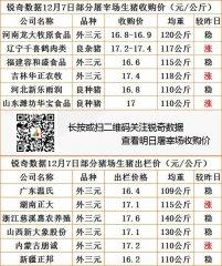 猪易通app12月07日部
