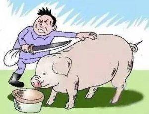 """猪价再冲9受阻,谁能想到""""元凶""""居然是它!!!"""