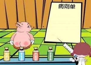 猪场疾病用药思路--都