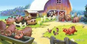 猪场后备猪蓝耳病的驯化