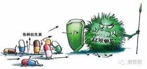 硫酸粘杆菌素的禁用说硫粘:中国养殖后抗生素时代的应对