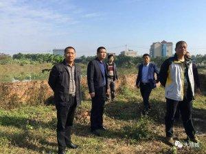 元旦期间也不停歇,靖城镇持续推进生猪养殖污染整治