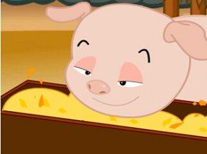 如何让小猪快速学会吃