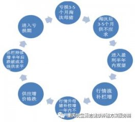 2016年中国生猪养殖行业存栏量及市场前景分析