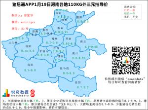 猪易通app1月19日河南