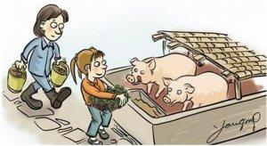 北京怀柔关闭禁养区内41家规模化畜禽养殖