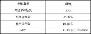 安徽繁昌龙腾牧业:细节决定成败、精益求