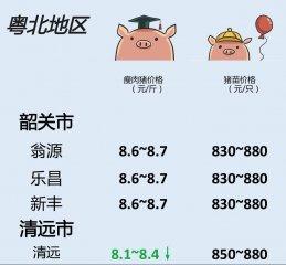 猪价 | 2月20日 广东
