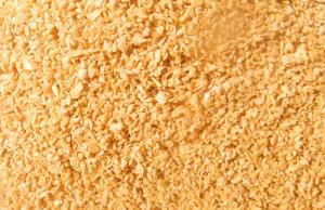 2月22日国内各地区豆粕价格行情