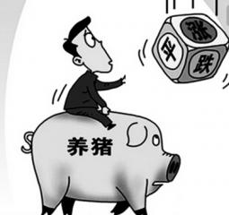 猪价将下跌还是迎来下一波高价潮?