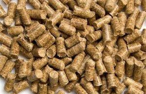 金新农:饲料、养殖共振奠定高增长基调