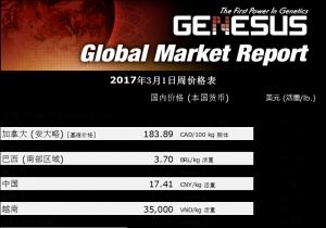 美国市场报告
