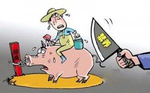 禁养区内复养 金淘2家生猪养殖场被拆