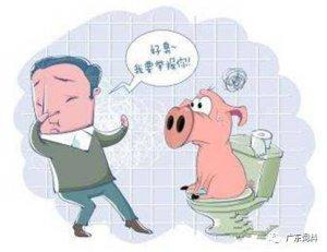 大部分猪场都会中招:猪场环保四大投诉热